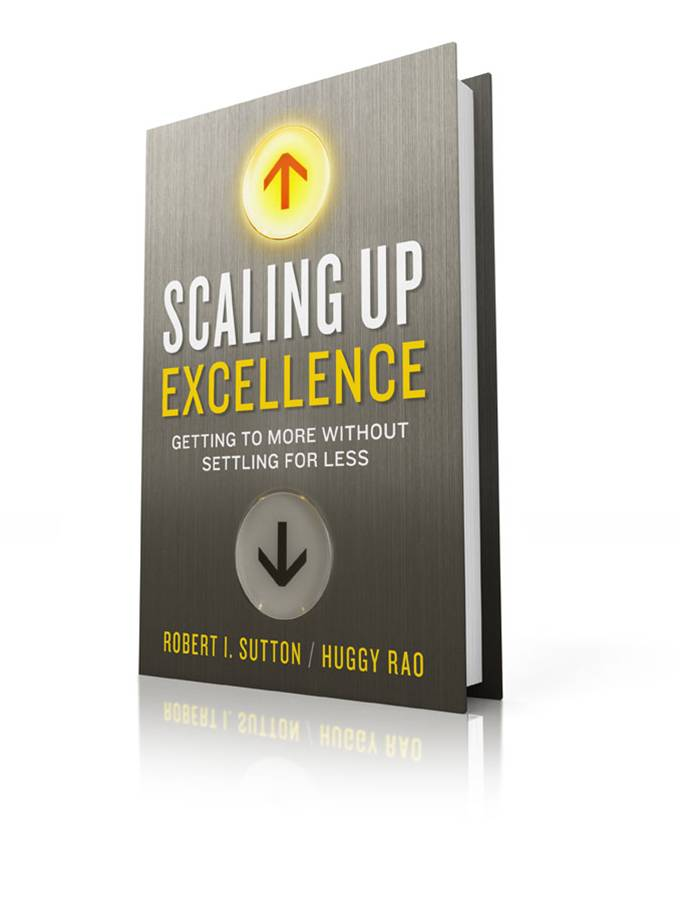 Fancy scaling up excellence cover