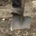 Shovel_2